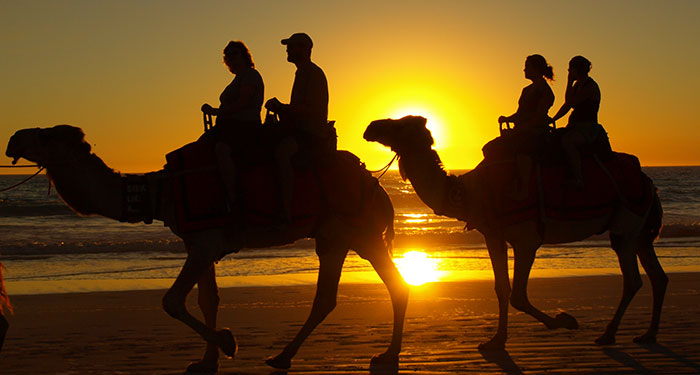 Cable Beach Sunset Camel Ride 2